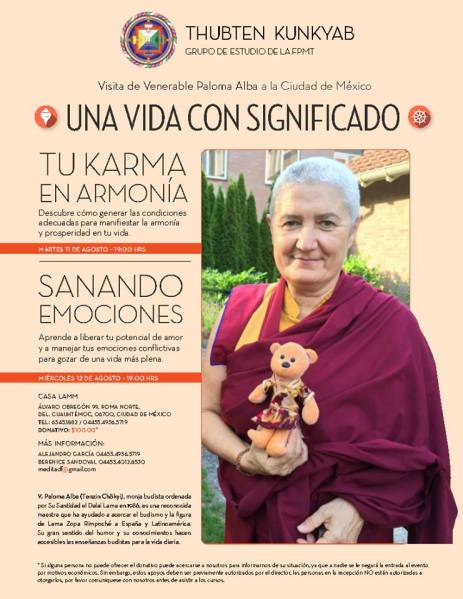 Venerable Paloma en DF